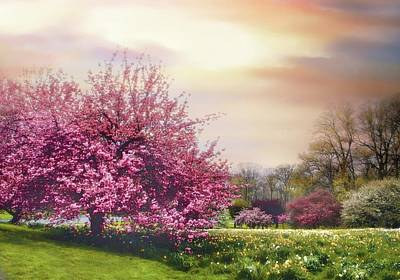 Photograph - Cherry Orchard Hill by Jessica Jenney