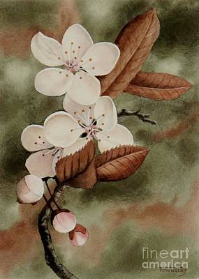 Painting - Cherry Sprig by Frank Townsley