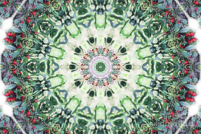 Digital Art - Cherry Tree Kaleidoscope by Donna L Munro