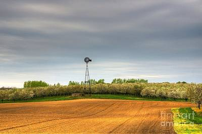 Photograph - Cherry Valley by Randy Pollard