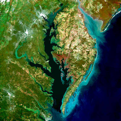 Technical Painting - Chesapeake Bay by Elaine Plesser