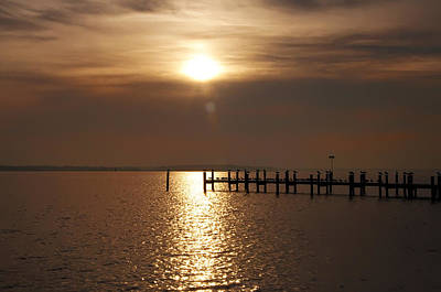 Chesapeake Morning Art Print by Bill Cannon