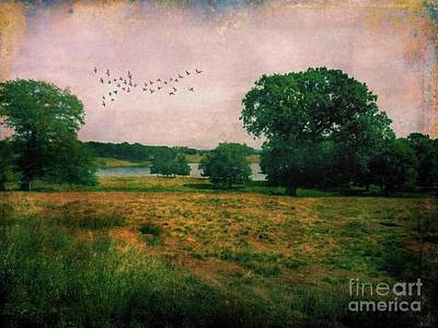 Photograph - Cheshire Countryside Vintage View by Patricia Strand
