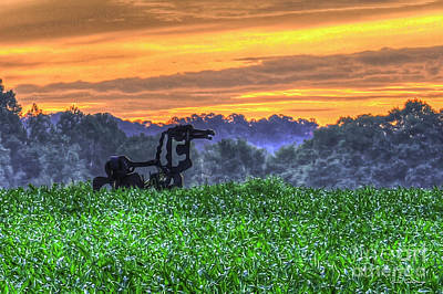 Photograph - Waist High Corn The Iron Horse Collection Art by Reid Callaway