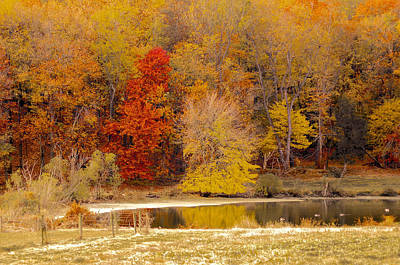 Photograph - Chester County Duck Pond by Susan Maxwell Schmidt
