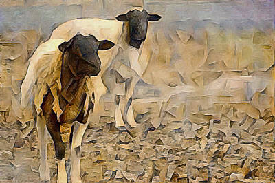 Photograph - Chester County Goats by Susan Maxwell Schmidt