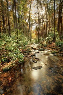 Digital Art - Chester Creek Georgia by Lori Deiter