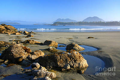 Photograph - Chesterman Beach by Frank Townsley