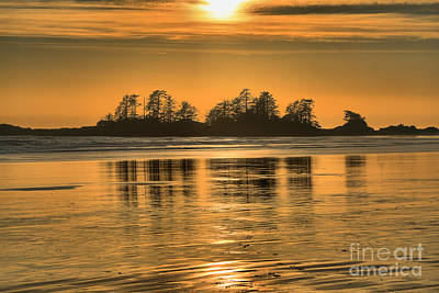 Photograph - Chesterman Beach Golden Sunset by Adam Jewell