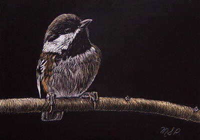 Painting - Chestnut Backed Chickadee by Margaret Sarah Pardy