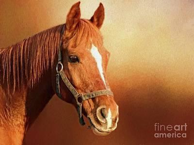 Digital Art - Chestnut Horse by Suzanne Handel