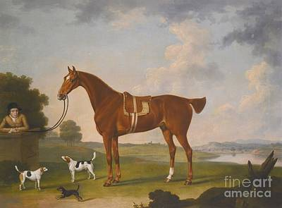 Chestnut Hunter With A Groom And Two Hounds Art Print