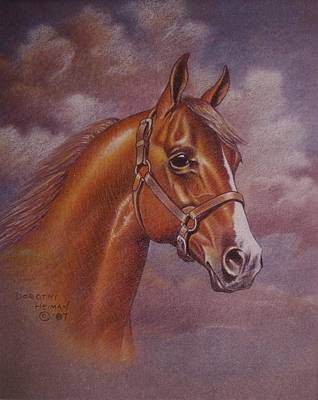 Painting - Chestnut Quarter Horse by Dorothy Coatsworth