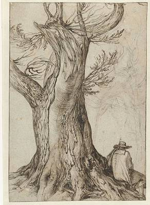 Kitchen Mark Rogan - Chestnut tree with some trees around it, the Gheyn Jacob II, 1598-1608 by Gheyn Jacob