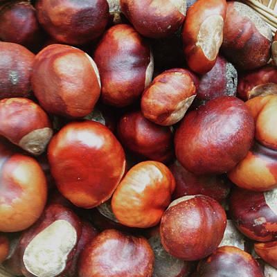Chestnuts Palette Art Print