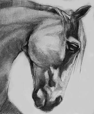 Drawing - Cheval Horse Classic Graphite Charcoal Drawing by Michele Carter