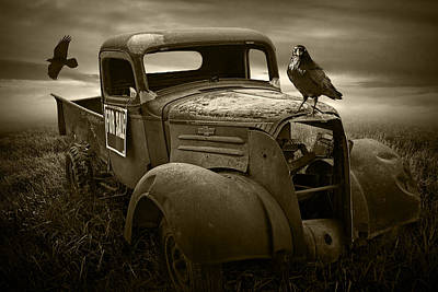 Chevy Pickup Truck In Sepia Tone With Ravens Art Print by Randall Nyhof