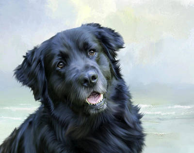 Newfie Painting - Chevy The Newfie by Cheryl Butler