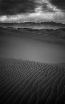 Photograph - Chewing Sand by Bjorn Burton