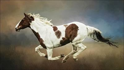 Photograph - Cheyenne, Barrel Racer by Flying Z Photography by Zayne Diamond