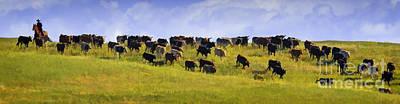 Working Cowboy Photograph - Cheyenne Cattle Roundup by Priscilla Burgers