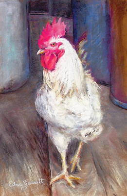 Drawing - Chic Rooster by Edna Garrett