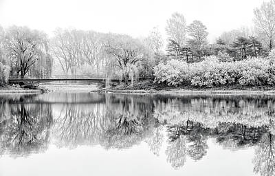 Photograph - Chicago Botanic Garden In Black And White by Julie Palencia