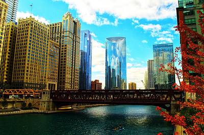 Photograph - Chicago Fall by Joseph Caban