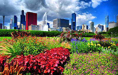 Photograph - Chicago N Flowers by Emily Stauring