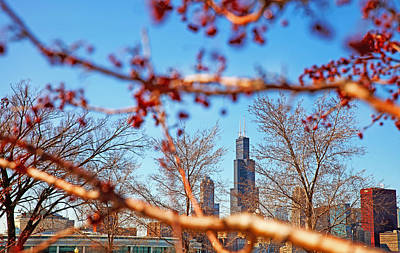 Photograph - Chicago Spring Skyline With Sears Tower by Candace Zynda