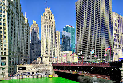 Photograph - Chicago St. Patrick's Day Celebration by Alan Toepfer