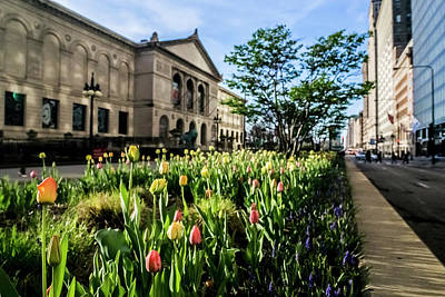 Photograph - Chicago's Art Institute One Early Spring Morning by Sven Brogren