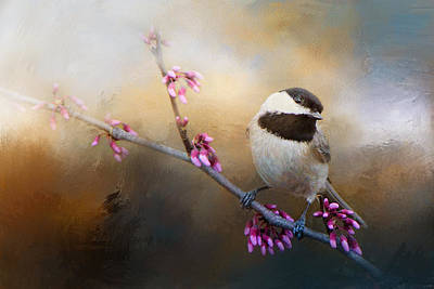 Photograph - Chickadee And Pink Blooms by Jai Johnson