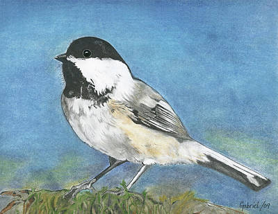 Chickadee Mixed Media - Chickadee by Gabriel Chudleigh