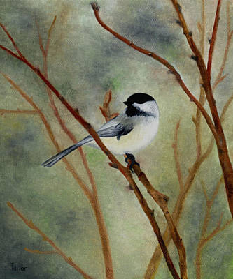 Painting - Chickadee In Winter by FT McKinstry
