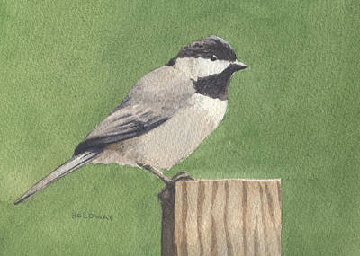 Painting - Chickadee by John Holdway