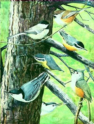 Titmouse Mixed Media - Chickadees Nuthatches And Titmouse Birds by Rose Santuci-Sofranko