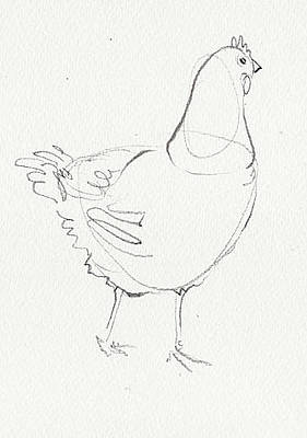 Drawing - Chicken 1 by Amy Bernays