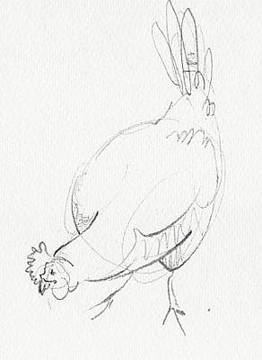 Drawing - Chicken 2 by Amy Bernays