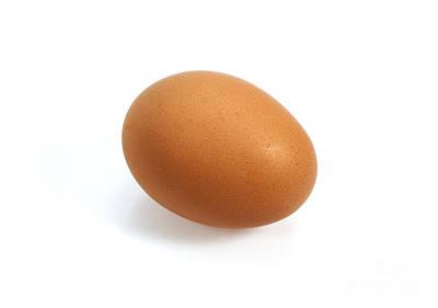 Chicken Egg Art Print