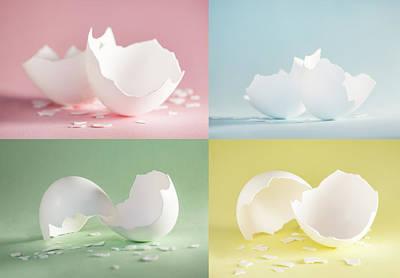Anne Geddes Florals - Chicken Egg Shell Quartett by Iris Richardson
