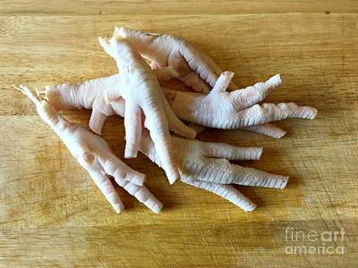 Photograph - Chicken Feet Without Toenails by Henrik Lehnerer