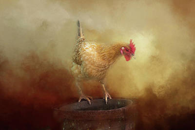 Photograph - Chicken by Michele Wright