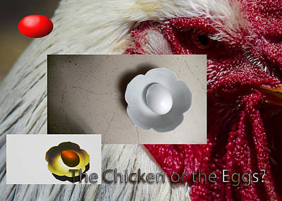 Photograph - Chicken Or Egg Poster by Jeff Kurtz