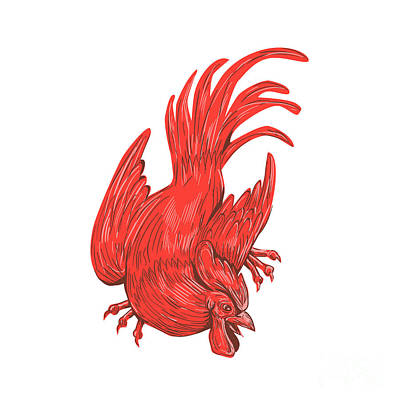 Rural Scenes Digital Art - Chicken Rooster Crouching Drawing by Aloysius Patrimonio
