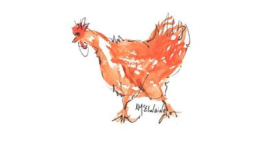 Painting - Chicken Scratch 3 by Kathleen McElwaine