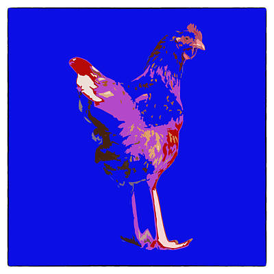 Photograph - Chicken With Tall Legs by James Bethanis