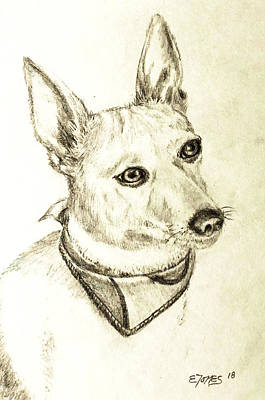 Drawing - Chico by Edgar Torres