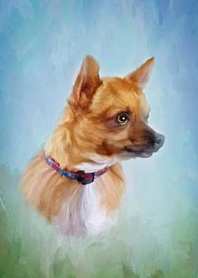 Terrier Digital Art - Chico by Mary Timman