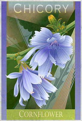Chicory Cornflower Floral Poster Original